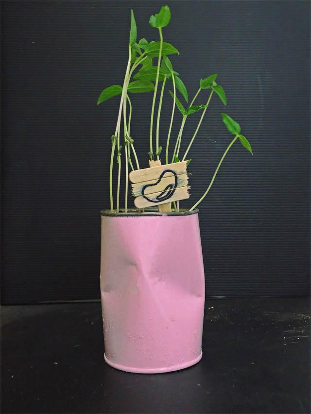 pot unik dari kaleng bekas