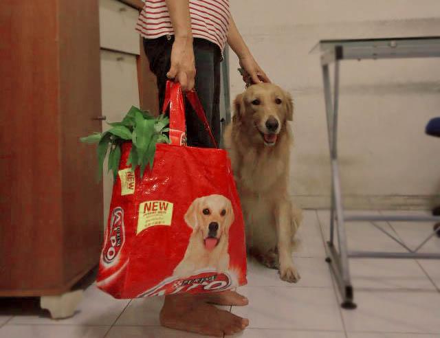 Tas dari karung dog food